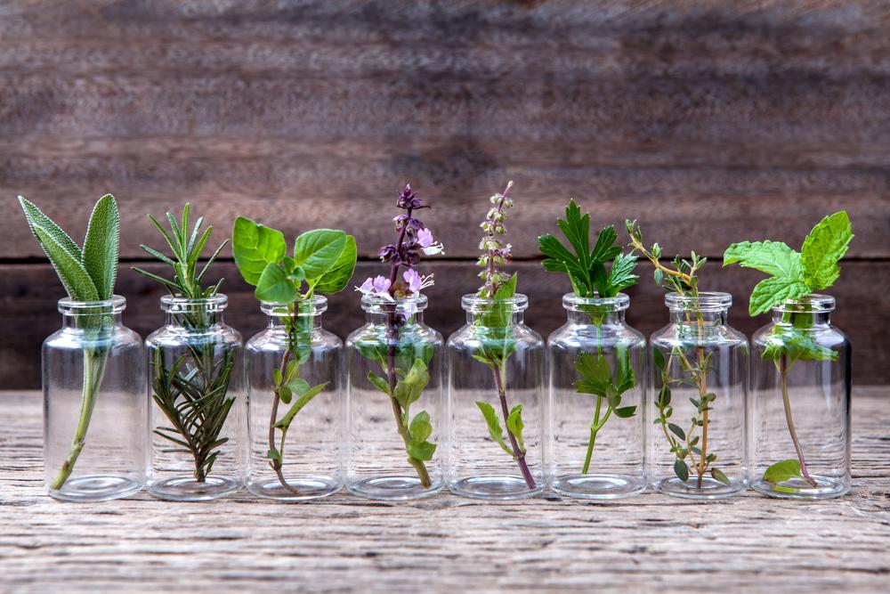 homeopathische geneesmiddelen