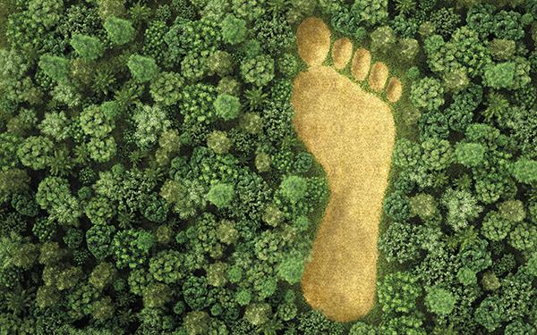 Naar Footprint Justice