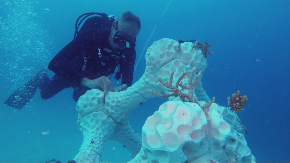 3D-geprint koraal op de Malediven oplossing voor koraalsterfte