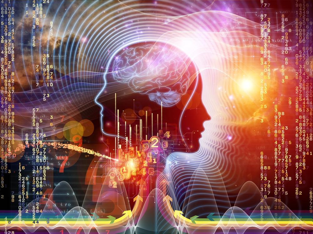 Stress en burn-out bij homo sapiens
