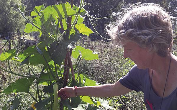 Marian Rupert: 'De natuur heeft enorme groeikracht'