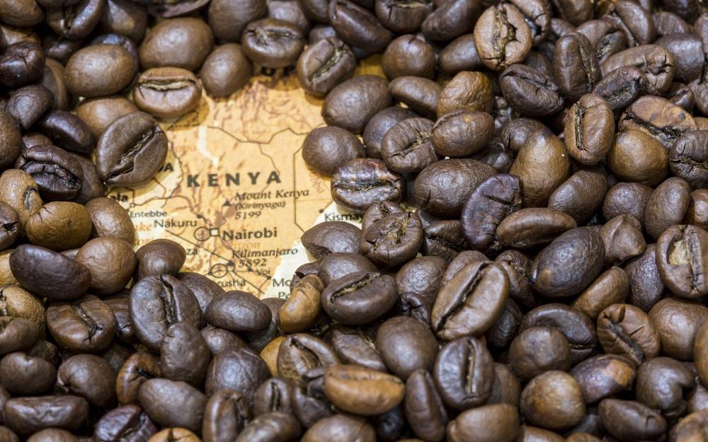 Volg de koffiereis naar het Keniaanse hoogland