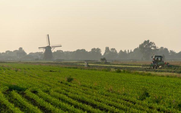 True Cost Pricing mogelijke oplossing voor kringlooplandbouw