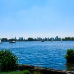 Neem een duik in de Nederlandse natuur