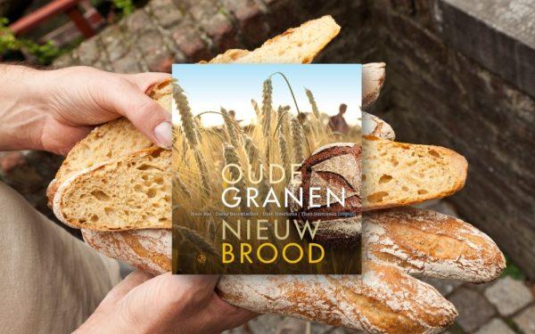 Premium afbeelding brood 1000×625