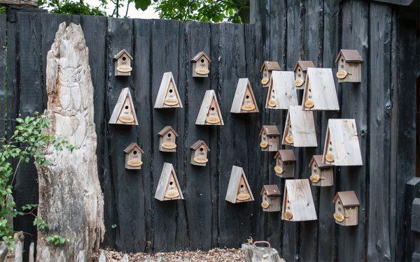 birdhouse-3349375_1920-2