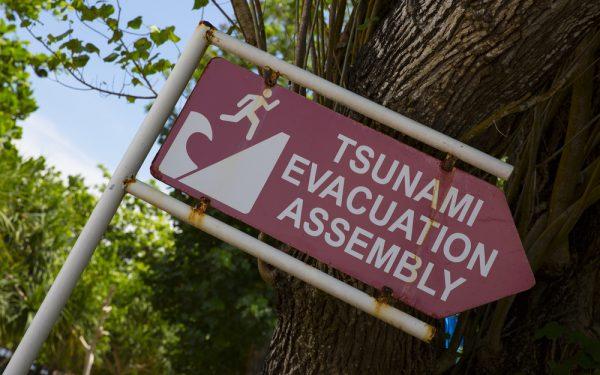 Fugaku de tsunamiziener