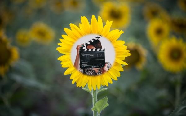Flower regie 1000×625